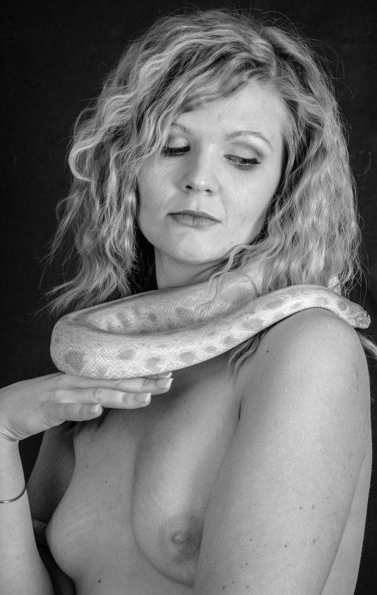 Snake-Shooting